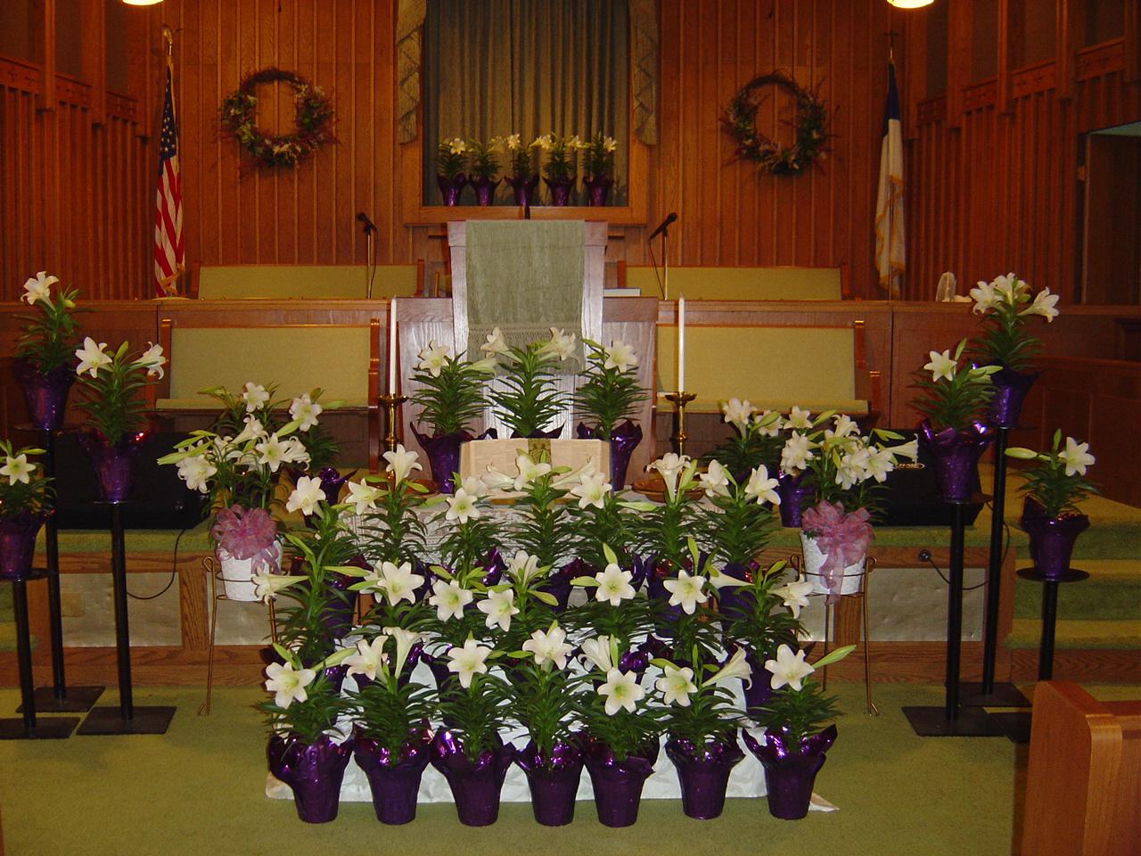 Flower ministry gloucester point baptist church - Trinity gardens church of christ ...